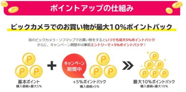 PayPay 楽天 ビックカメラ キャンペーン
